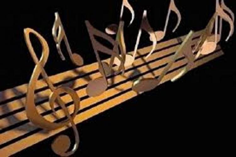فضای اجتماعی هنر موسیقی در ایران بررسی شد